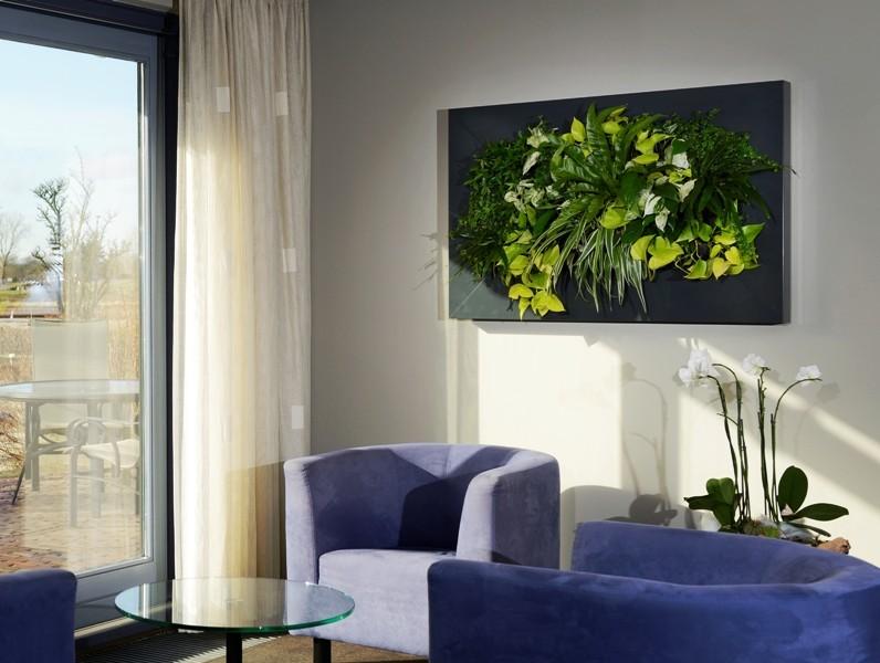 Zuidkoop bv livepicture levend schilderij van planten for Planten schilderij intratuin