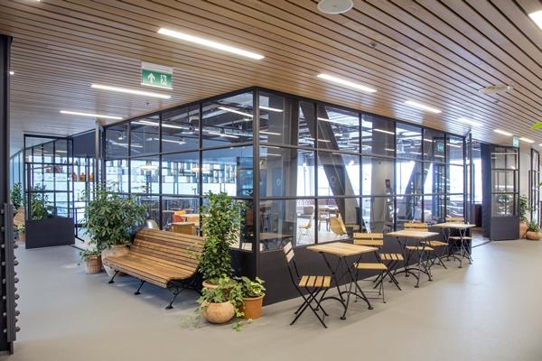 Derako international b.v. werkplekken vgz met houten plafond